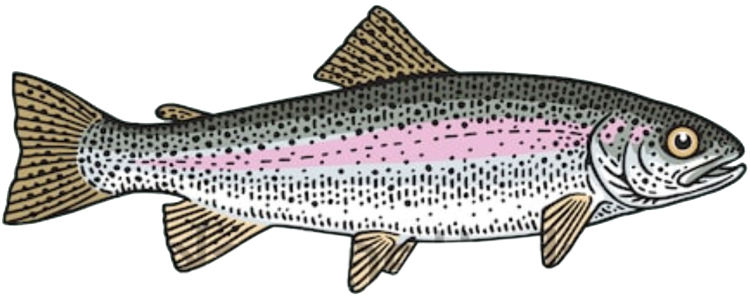 steelhead-rainbow-trout-fish-toronto-fishing-charter
